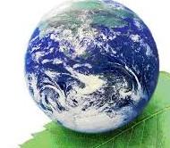Mari Jose - Medio ambiente